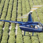R66 Over Orange Groves